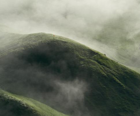 Verde / Green Landscape – Agriculture